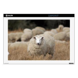 "Full fleece sheep 17"" laptop skin"