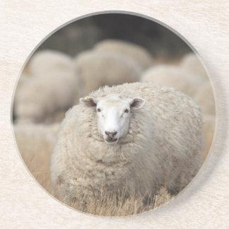 Full fleece sheep drink coaster