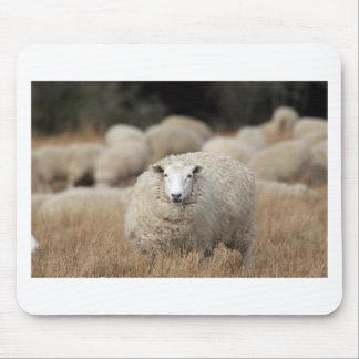 Full fleece sheep mouse pad