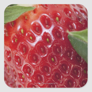 Full frame close-up of a Strawberry Square Sticker