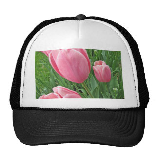 Full Frame Pink Tulips photograph Trucker Hat