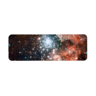 Full Hubble ACS Image of NGC 3603 Return Address Labels