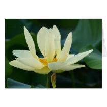 Full Lotus Card