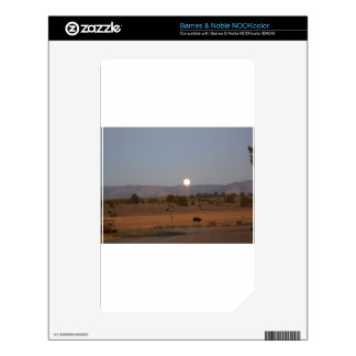 Full Moon at Twilight NOOK Color Decal