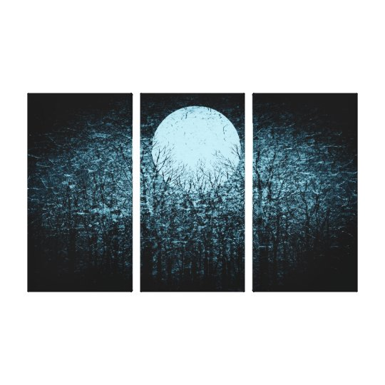 Full moon at winter night   Black and White Art 3 Canvas Print