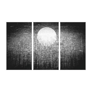 Full moon at winter night | Black and White Art Canvas Print