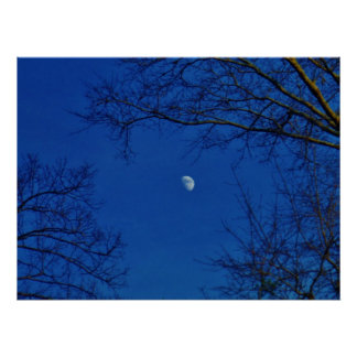 Full Moon Bright Blue Clouds with trees Posters