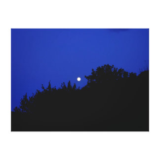 Full Moon, Extra Large Canvas