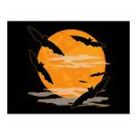 Full Moon Halloween Bats Post Card
