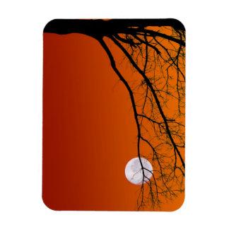 Full Moon Halloween Magnets
