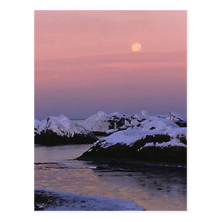 Full Moon High Tide Postcard