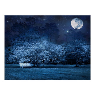 Full moon night in park posters