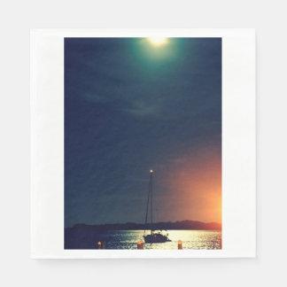 Full Moon Over Florida Napkin