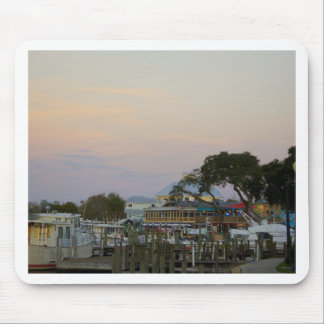 Full Moon Over Homosassa Mouse Pad