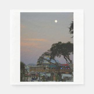 Full Moon Over Homosassa Paper Napkin