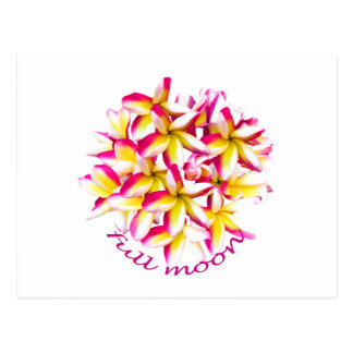 Full Moon party Koh Phangan Postcard