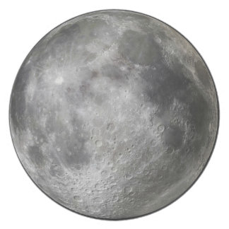 Full moon plate.  Why?  To freak out werewolves. Melamine Plate