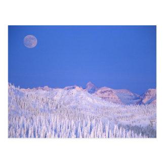 Full moon rising above Glacier National Park Postcard