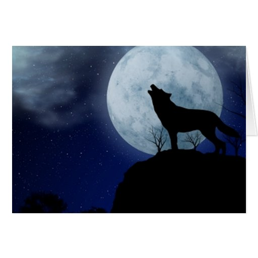 Full Moon Wolf Cards