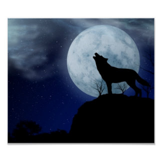 Full Moon Wolf Poster