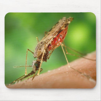 Full Mosquito - State Bird Mouse Pad