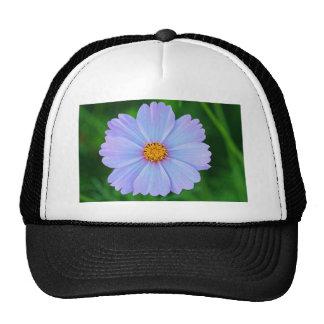 Full of Stars Trucker Hat