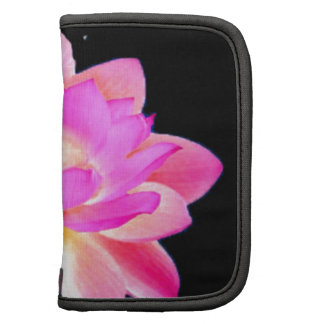 FULL PINK LOTUS WITH PEARL CHAKRA BLOOM ORGANIZER