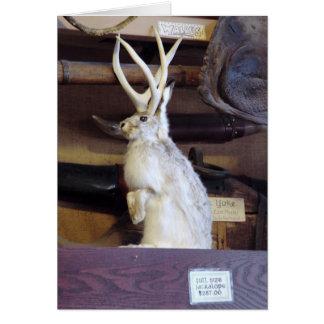 Full Size Jackalope $287.00 Greeting Card