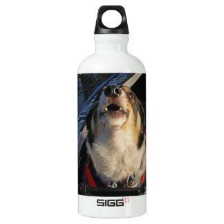 Full Stop! SIGG Traveler 0.6L Water Bottle