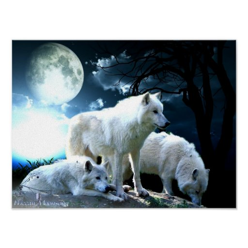 Full Wolf Moon Large Posters