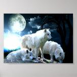 Full Wolf Moon Print