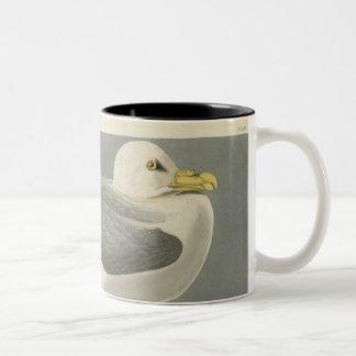 Fulmar Petrel Two-Tone Coffee Mug