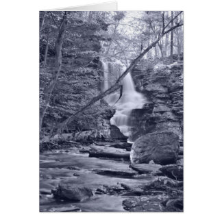 Fulmer Falls, Pennsylvania Card