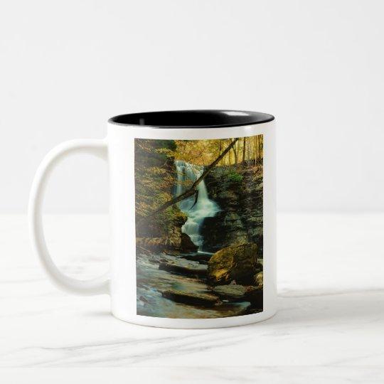 Fulmer Falls Two-Tone Coffee Mug