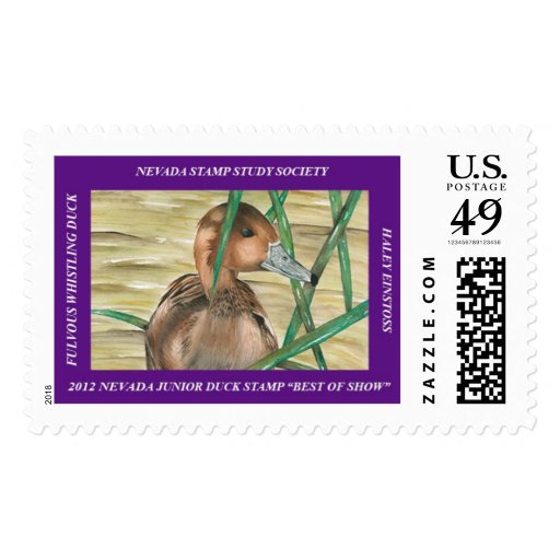 Fulvous Whistling Duck Postage Stamp