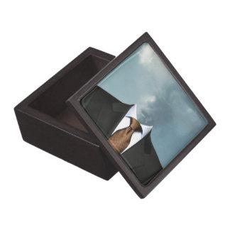 """Fumar"" Gift Box"