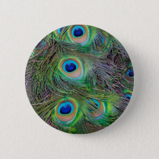 Fun and Cool peacock feather design Pinback Button