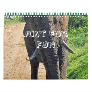 Fun Animal & Bird Calendar
