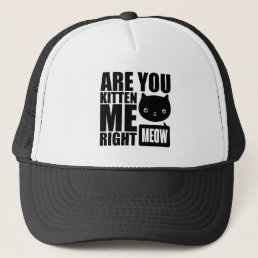 Fun Are You Kitten Me Right Meow Hat
