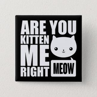 Fun Are You Kitten Me Right Meow Square Button