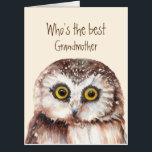 """Fun Best Grandmother Birthday Wise Owl Humor Card<br><div class=""""desc"""">Hooo's the best Grandmother? Birthday    You are and I hope you have a wonderful birthday with cute watercolor owl bird.</div>"""