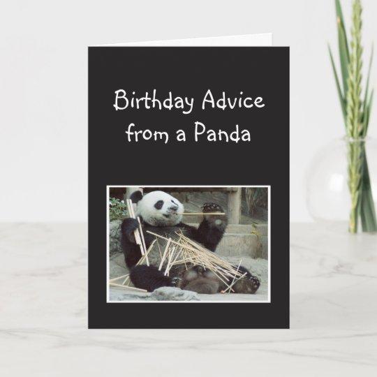Fun Birthday Advice From Panda Bear Animal Humor Card