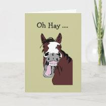 Fun Birthday Great Day to Horse Around Card