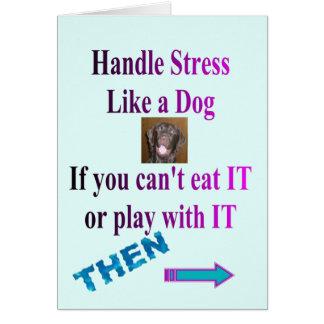 FUN CARD STRESS RELIEVER