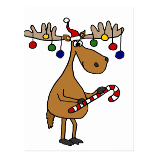 Fun Christmas Moose with Candy Cane and Ornaments Postcard