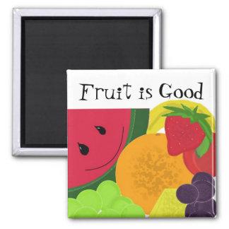 Fun Fruit Explosion Magnet