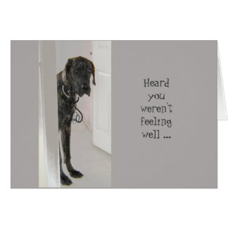 Fun Get Well Great Dane Dog Dogter (doctor) Humor Card