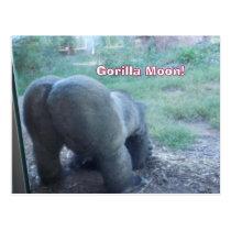 Fun Gorilla Moon Postcard