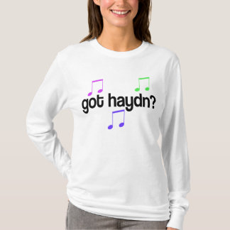 Fun Got Haydn Music T-shirt