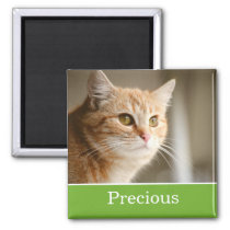 Fun Green Personalized Pet Photo Magnet